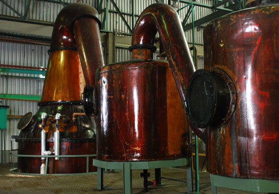 ron-botucal-reserva-exclusiva-rum-pot-stills-offenbach-frankfurt